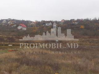 6 ari teren spre Vânzare, p/u construcție, Dumbrava, 4000 euro