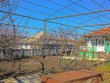 casa in Peresecina