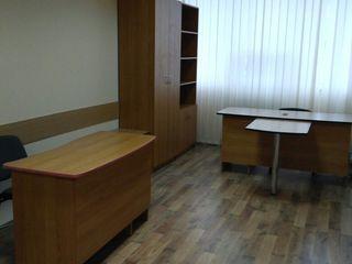 Oficii, Chirie, Centru.