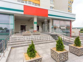 Chirie/vânzare producere - 1000mp, str. Alba Iulia