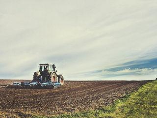 Cumpar 5 hectare teren agricol 1000-1500 euro hectarul