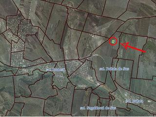 Budesti - lot de teren agricol 1 ha - 6000 €