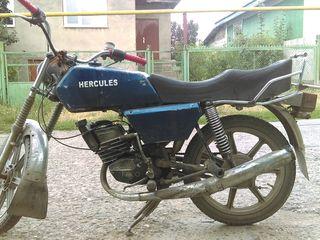 Sachs Hercules