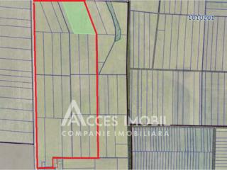 Lot de teren agricol, 50ha, Ciobanovca, Anenii Noi!