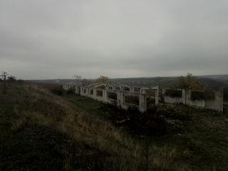 Ферма для животноводства в Шолданештском р-не, На берегу Днестра.