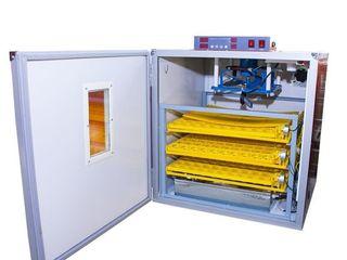 Инкубатор автоматический MS-294/Incubator automat la 294 oua/Garantie/Livrare Gratuita/ 6500 lei/