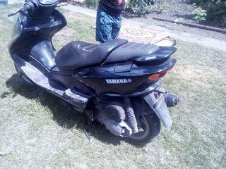 Yamaha Majestik