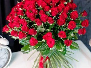 101 trandafiri premium