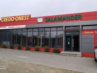 Cladire pentru afaceri profitabile - 600 m2, 10 ari - Buiucani / Dumbrava/ Poltava