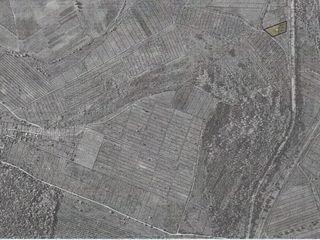 """Pamint arabil la 2 km de Complexul Etnocultural """"Vatra"""" linga traseu"""