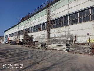 Depozit-hala de producere și comerț 1,8 mii m2