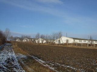 Banca vinde ferme cu teren aferent în r-nul Ungheni