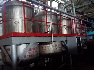 Fabrică de conserve