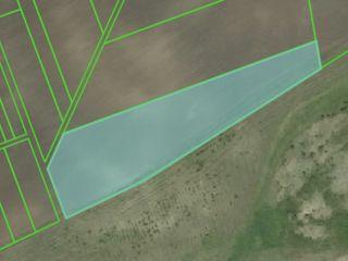 Teren agricol 1,2 ha, 12000€