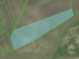 Teren agricol 1,2 ha, 12000€ sat. Horesti linga traseu