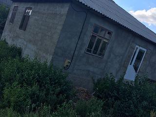Vind urgent Casa
