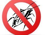 Уничтожение насекомых - тараканы, клопы, клещи, моль , блохи, пчелы, мухи , муравьи ,грызуны .