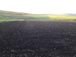 Teren agricol 1,41ha