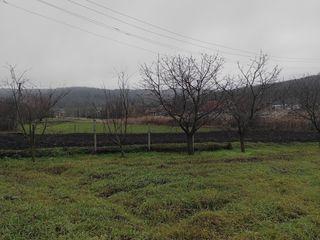 Срочно под строительство!!! 0.58 гектара , 12 км от Чекан