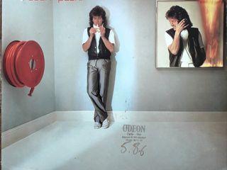 Vinyl Robert Plant