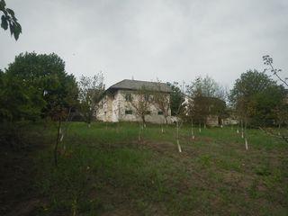 Продам дом с озером и ореховым садом