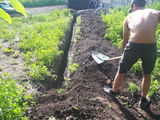 Уборка территорий, огородов и дачных участков