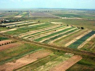 Vând cotă agricolă