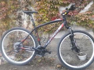 frera bike