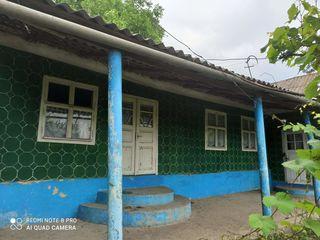 Vind casa Ignatei
