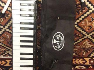 Духовой клавишный инструмент studen