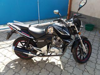 Motomax moto sport 250
