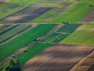 Teren agricol / Сельскохозяйственные земли