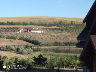 Se vinde teren pentru constructia casei in Dobrogea.
