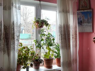 Se vinde urgent casa varatec apa calda canalizatie toata casa laminat dus cabina