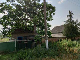 Продается дом в с. Новоселовка