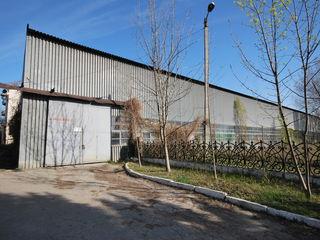 1600м2-3200 м2 под производство или склад  по ул. Волунтарилор!