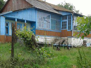 Продается дом в 20 км от Кишинева.Отличный старый дом с хорошим участком.