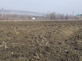 2,5 ha la traseul chisinau-ungheni cu constructie 30000 euro, arenda 24 mii lei