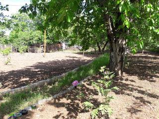 Ухоженный участок. Под огород и стороительство