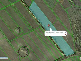 26 hectare teren arabil la Cismea - Orhei la pret de 2500 euro de hectar