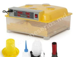 Инкубатор 48 яиц автоматический ASEL WQ-48/Incubator 48 ouă automat/Garantie/Livrare Gratuita/1350