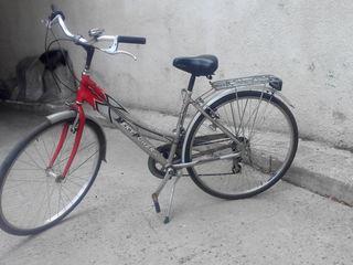 Vind  biciclete italiene