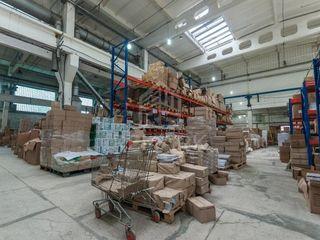 Теплый склад на Чеканах от 600 м кв.