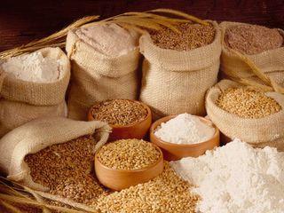 Постоянно в продаже крупы от производителя(пшеничная,ячневая,перловая,кукурузная).В мешках по 25кг