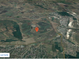 2 terenuri agricole (44 ari) Orhei, Seliste