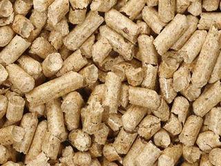 """Зоосалон """"Mister Dog"""" предлагает древесный наполнитель из древесины хвойных пород 15 кг 100 лей"""