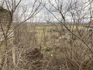 De vinzare teren pentru constructia casei, la traseu, satul Rosu, r-l Cahul