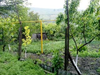 Casa - Perisecina , centru , 50 m2 , teren 7 ari - 8000 Euro