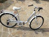 Biciclete dame