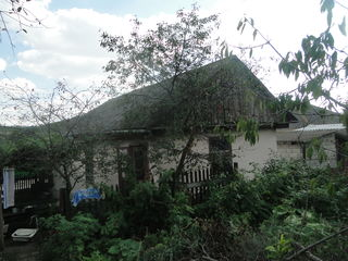 2 дома на 9 сотках в г. Фалешты